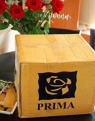 Prima box web