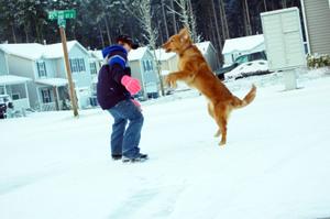 Roxy_loves_snow