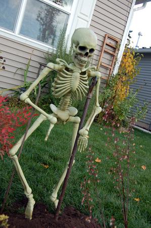 Skeleteeny